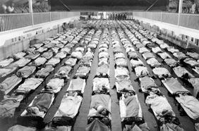 Flu Beds
